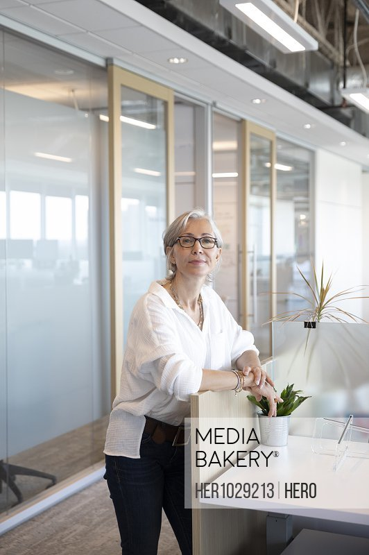 Portrait of senior businesswoman looking at camera