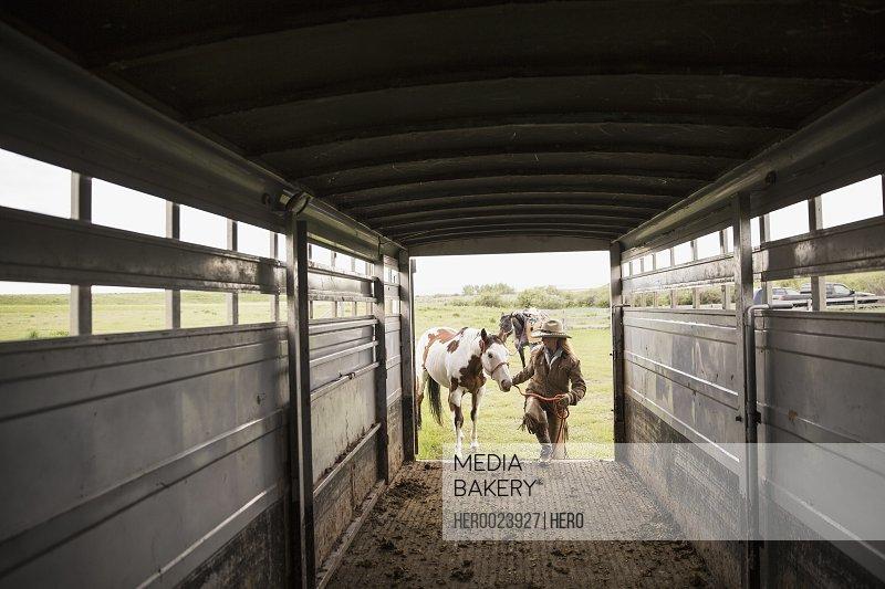 Female rancher loading horse into horse trailer