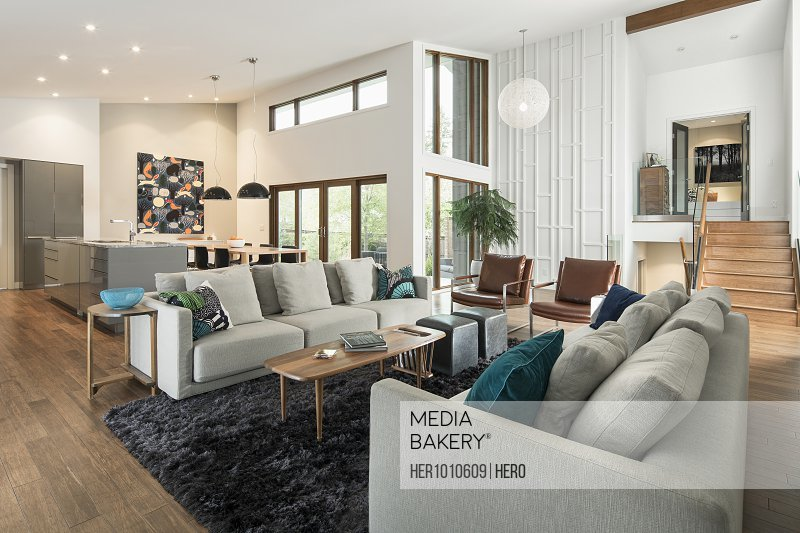 Home showcase mid-century modern open plan living room