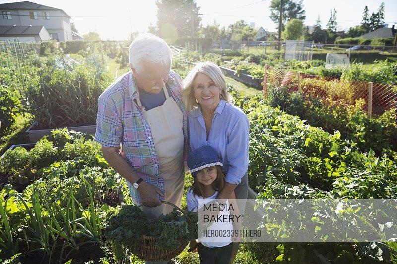 Portrait grandparents and granddaughter in sunny vegetable garden