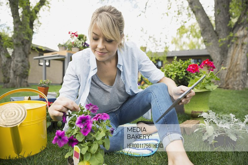 Woman with digital tablet planting flowers in garden