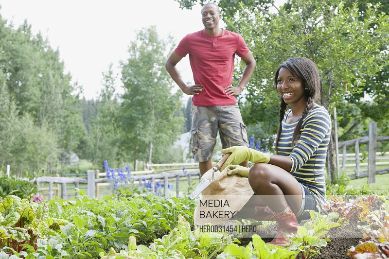 young african american couple working on vegetable garden