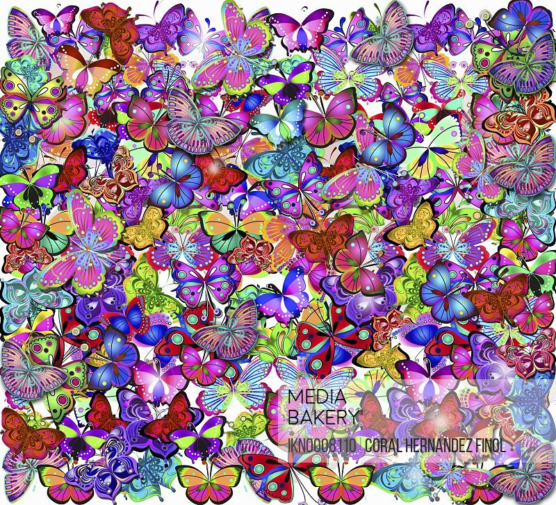 Ornate intricate multicolored butterfly pattern