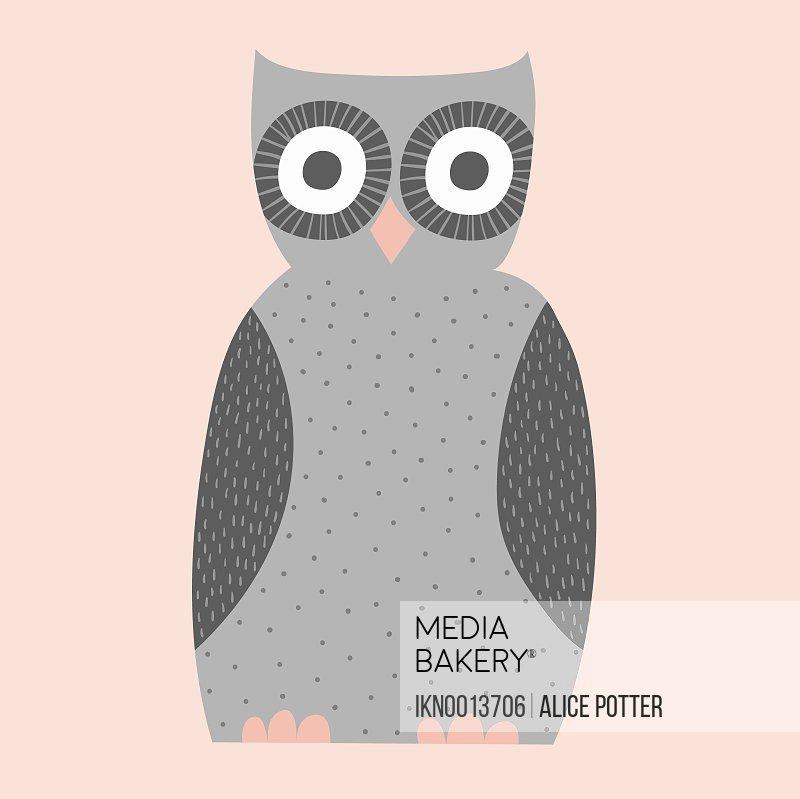 Cute illustration of gray owl