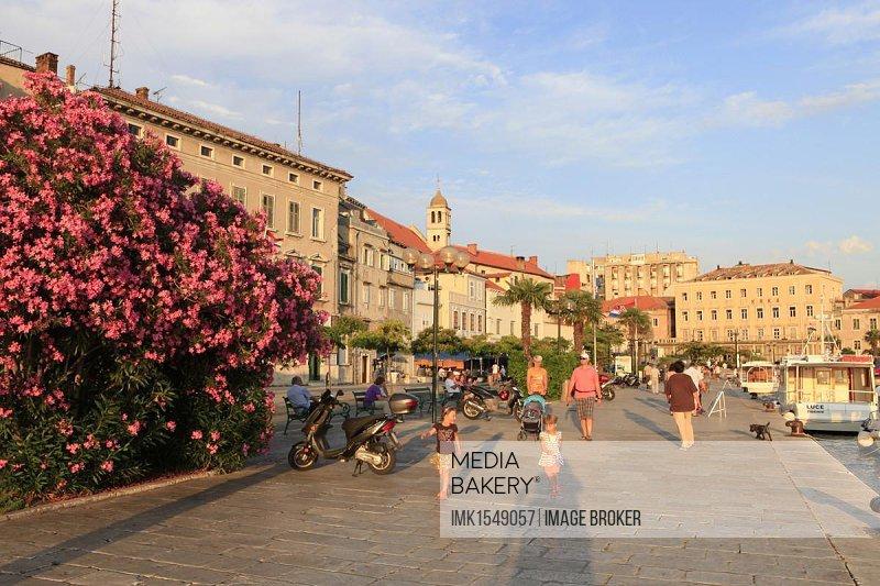 Waterfront, Sibenik, Dalmatia, Croatia, Europe, PublicGround, Europe