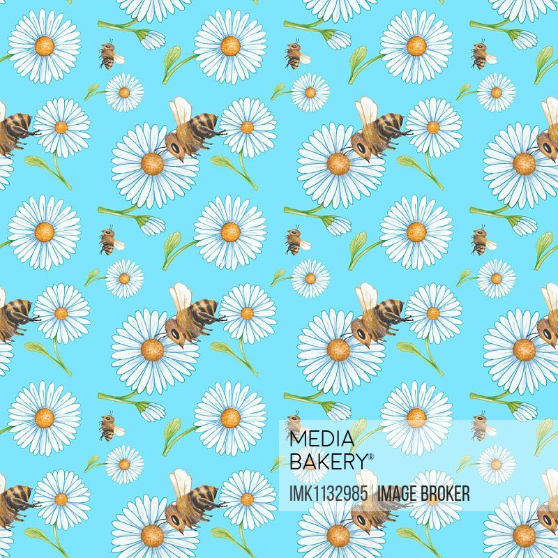 Wrapping paper, wallpaper, background light blue, seamless pattern, meadow, daisies and bumblebees or bees, Germany, Europe