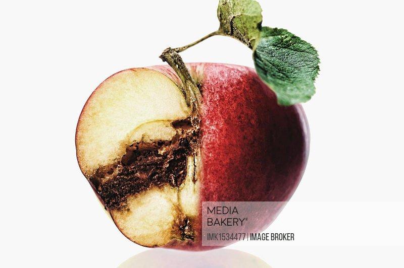 Cut apple, rotten inside
