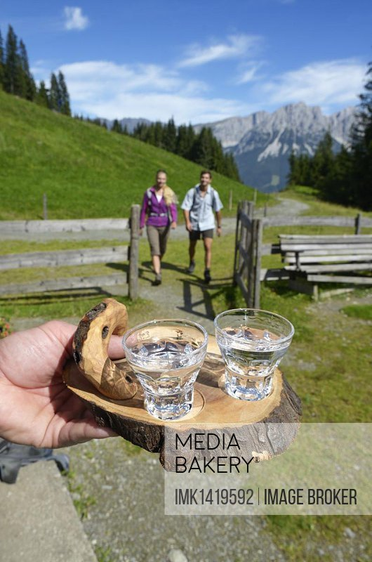 Hiking couple being welcomed with a schnapps at Blinzalm, Hartkaiser, view towards the Wilder Kaiser Mountains, Tyrol, Austria, Europe