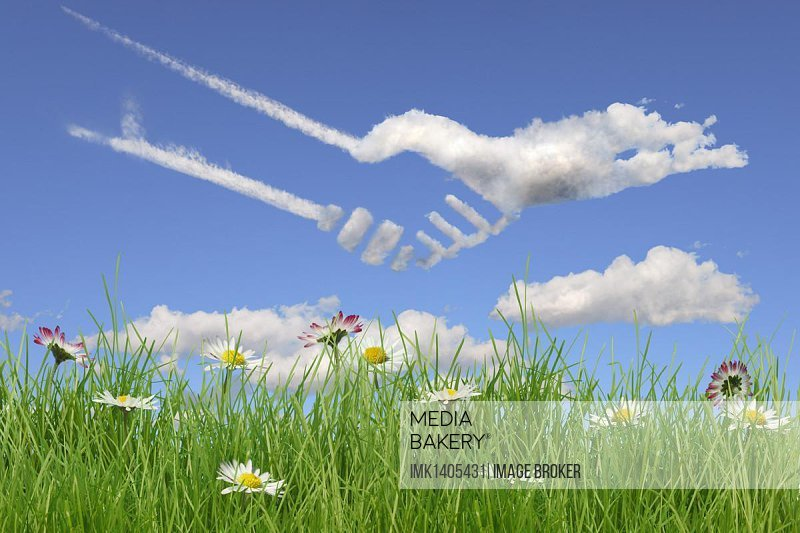 Field of flowers, clouds shaped like shaking hands, illustration