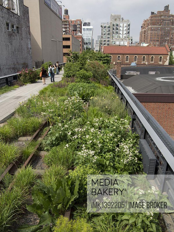 High Line Park with visitors, Manhattan, New York City, USA, North America, America, North America