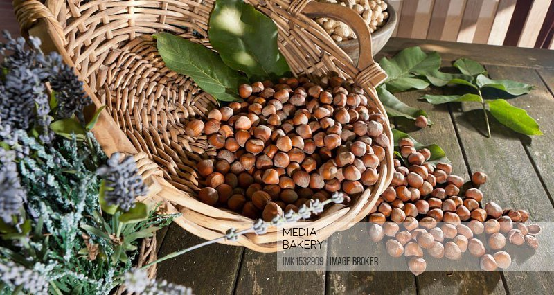Wicker basket with hazelnuts (Corylus avellana) on a rustic wooden table