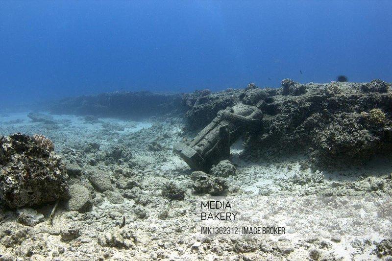 Statue under water, Maunalua Bay, Oahu, Hawaii, USA, North America