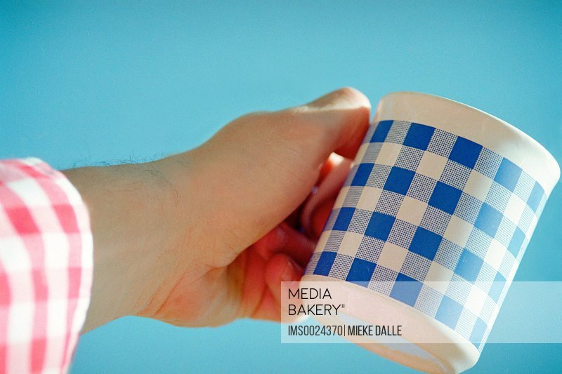 Blue checked mug
