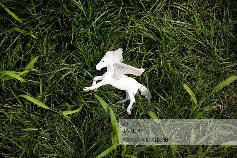 Toy unicorn on grass