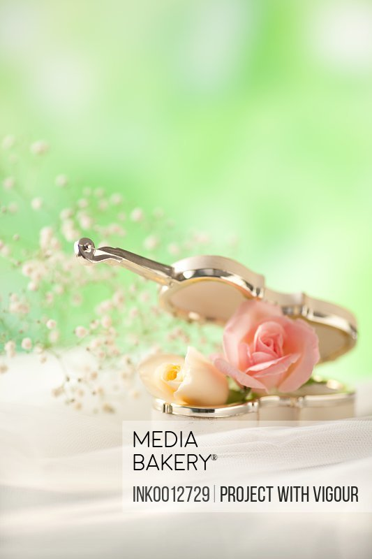 Miniature violin accessory and roses