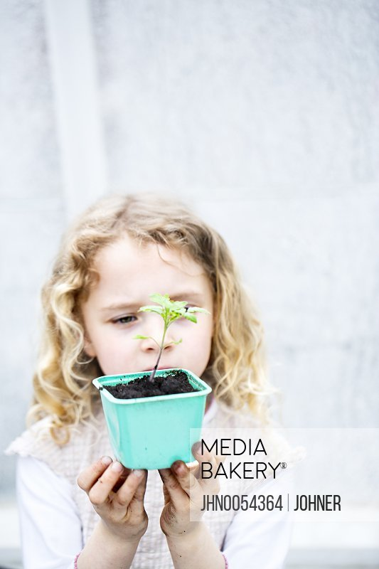 Girl holding seedling in pot