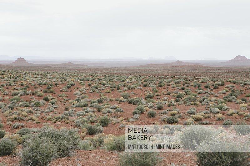 Mesa and vast desert in Valley of the Gods, Utah