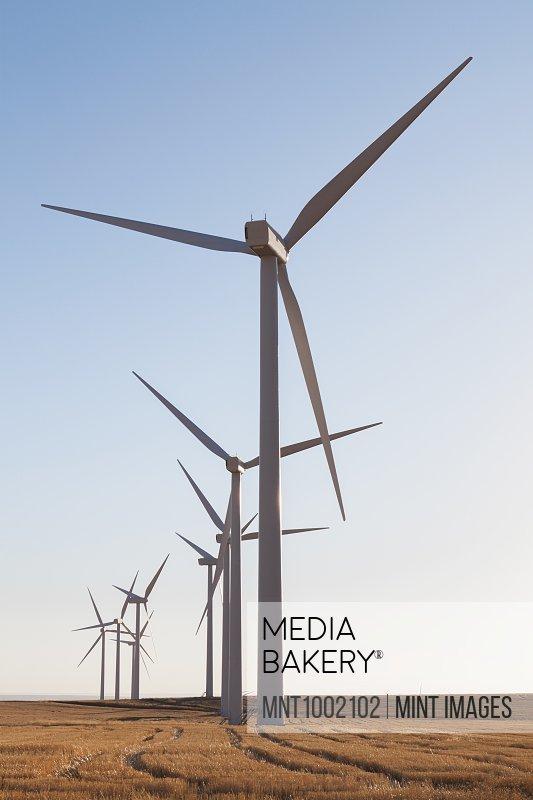 Tall wind turbines in open country farmland in Washington.
