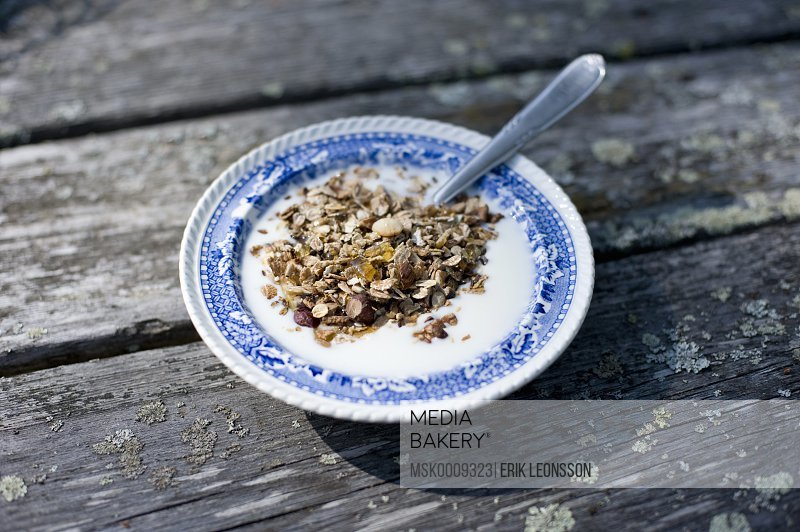 Closeup on plate with muesli