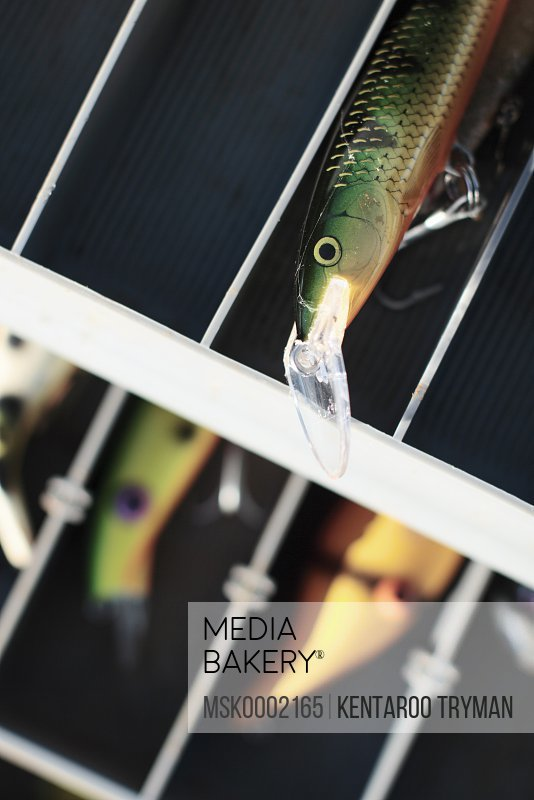 Close-up of artificial fishing lure