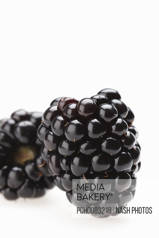 2 Blackberry shot Horizontal.