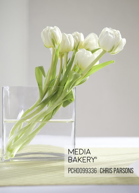 Mediabakery photo by photosync white flowers in a clear vase white flowers in a clear vase mightylinksfo