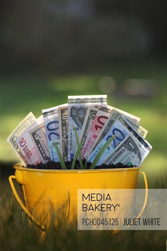 Mediabakery - Photo by Photosync Images -