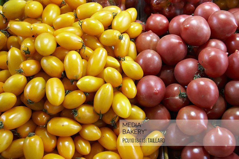 Yellow and red cherry tomatoes