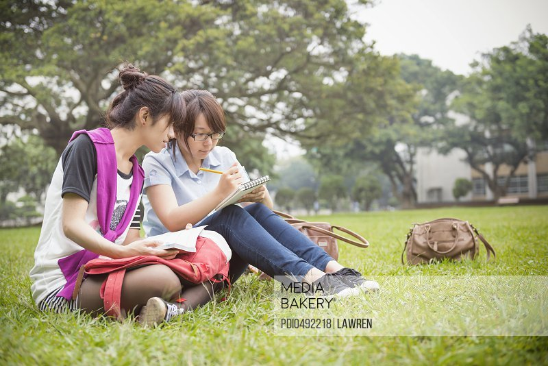 Two students reading on grassland