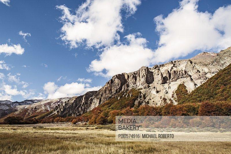 Fall Foliage in Patagonia