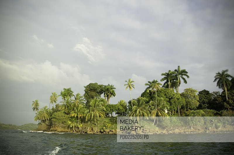 Section of rocky tropical island