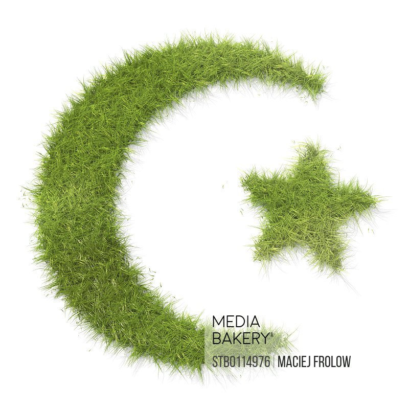 Mediabakery Photo By Stoked Islam Symbol Made Of Grass