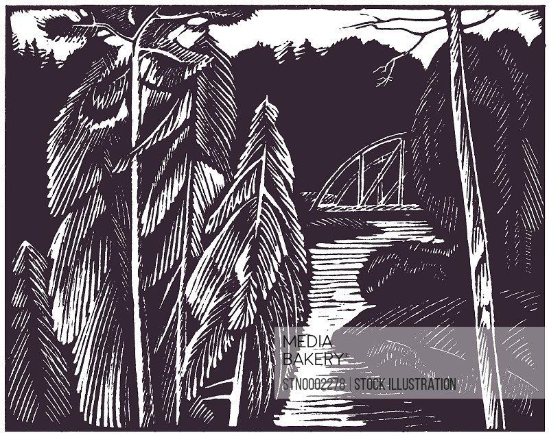 Railway bridge in forest