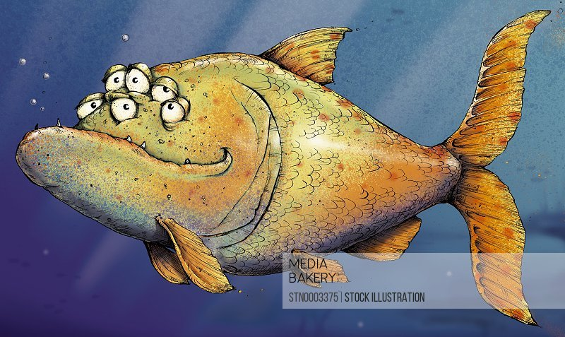 Fish with multiple eyes