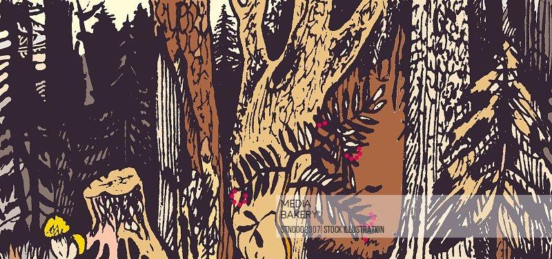 Rowan growing in forest