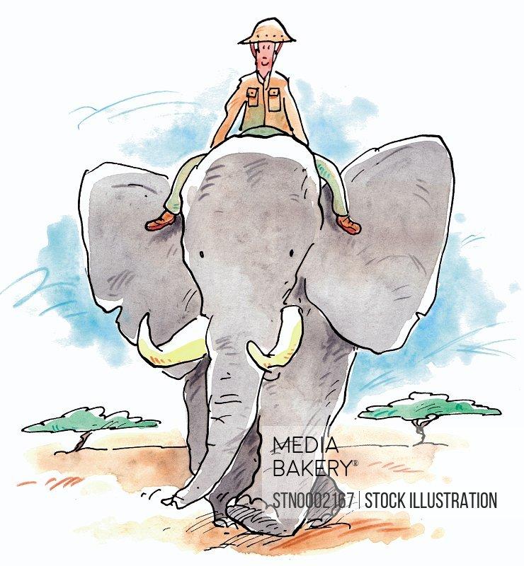 Man riding elephant