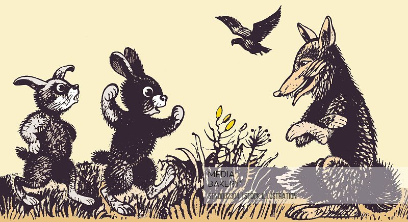 Wolf and two rabbits in meadow