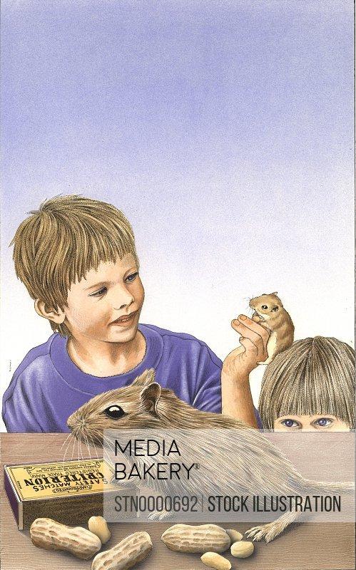 Boys looking at mice
