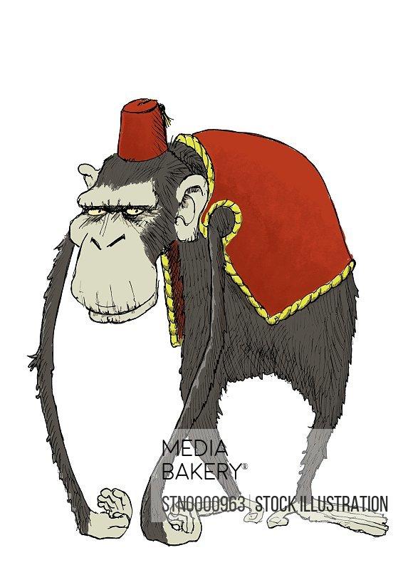 Grey sad monkey in red clothing, Turkish hat