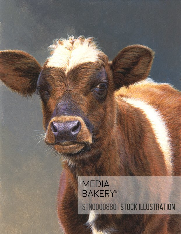 Portrait of brown cow