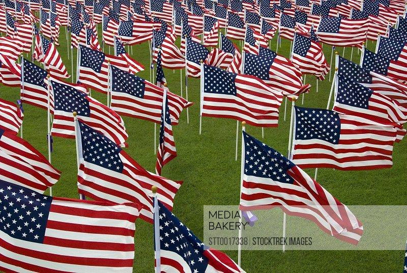 An abundance of American Flags.
