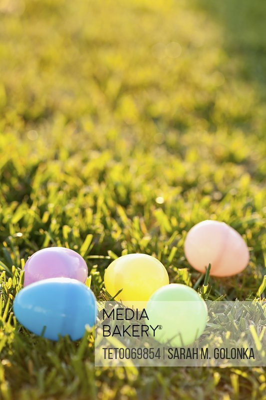 Colorful eggs laying on grass