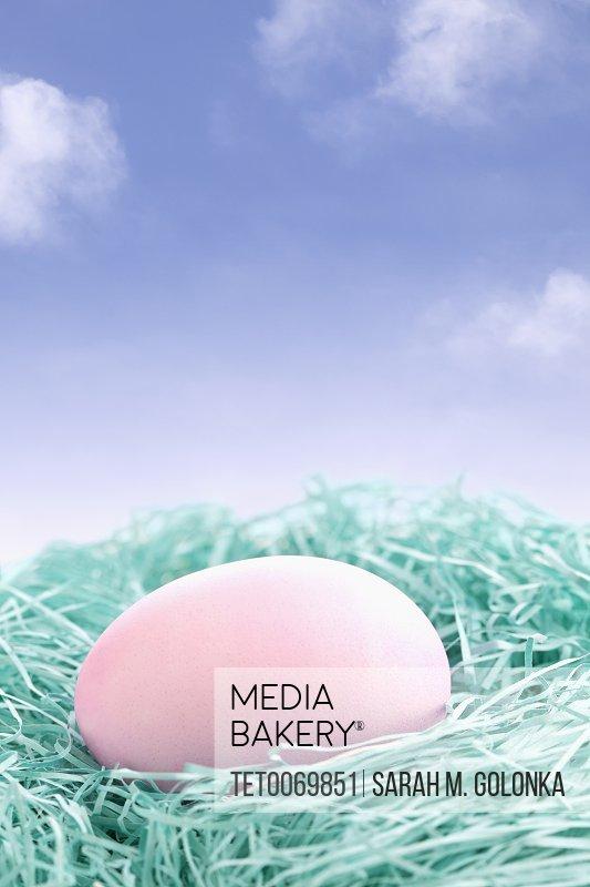Pink egg in nest