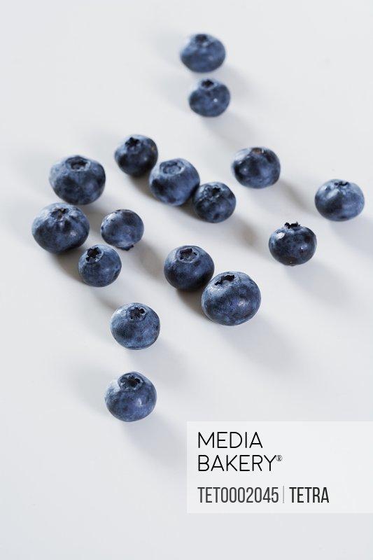 Still life of blueberries