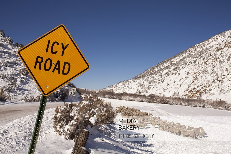 Road sign by snowcapped road in winter