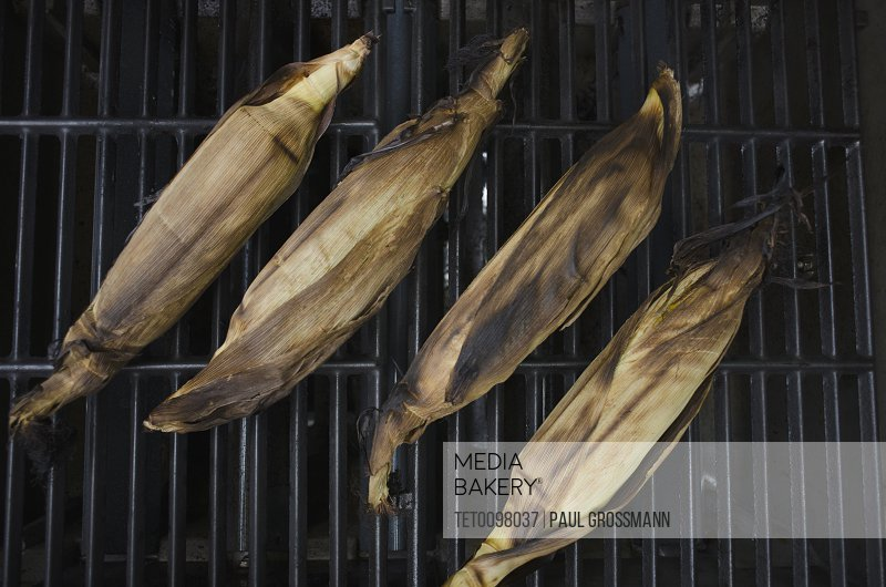 Directly above view of corncobs on barbecue