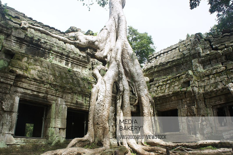 Tabb Angkor Wat temple in Cambodia