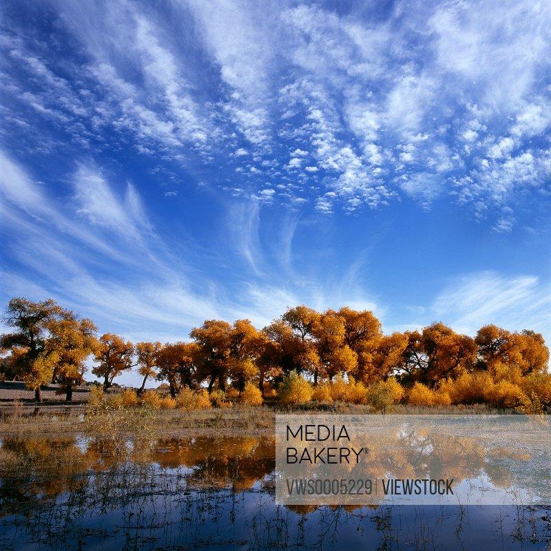 Landscape Inner Mongolia China