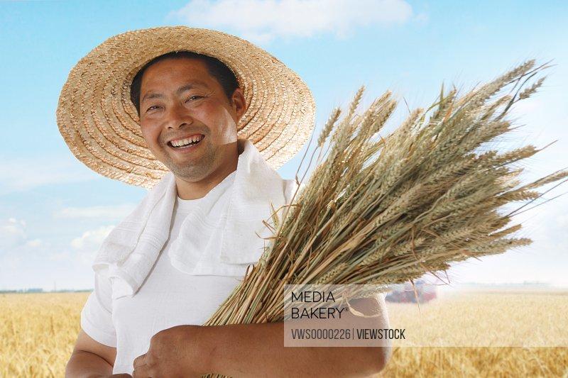 Farmer holding wheat in wheat field