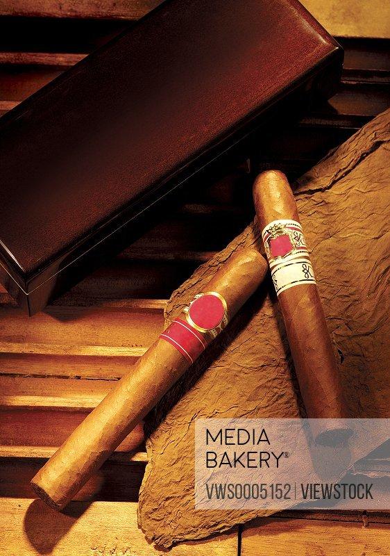 Close-up of Cigar